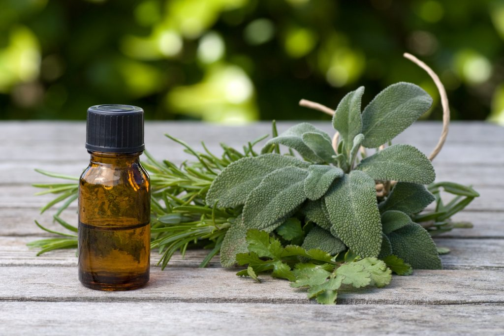 Herbal essence with sage and rosemary, with fresh foliage in the background
